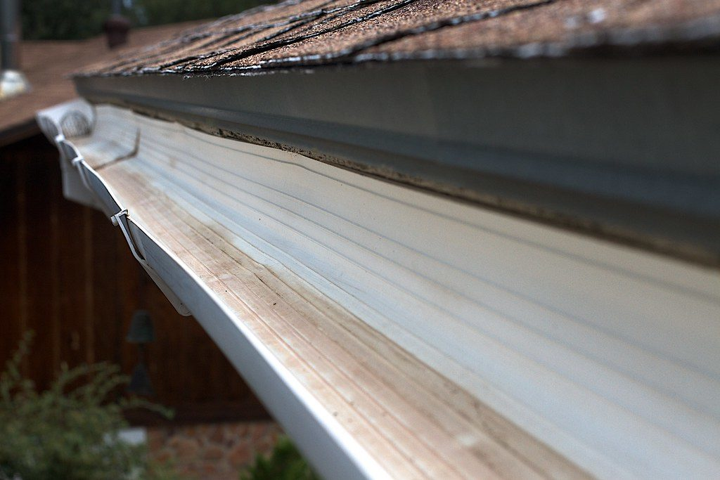 Clean out your rain gutters
